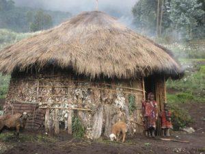 Poverty Hut