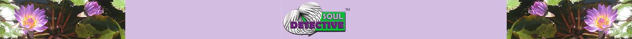 Soul Detective
